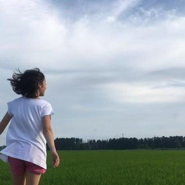 ポケイモン
