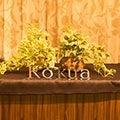 kokua渋谷のプロフィール