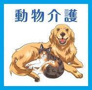 ペット介護ペット介護(老犬ケア・老猫ケア)