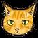 札幌市の保護猫カフェ【ツキネコカフェ】公式ブログ