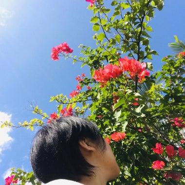 ☆AYAHAS☆