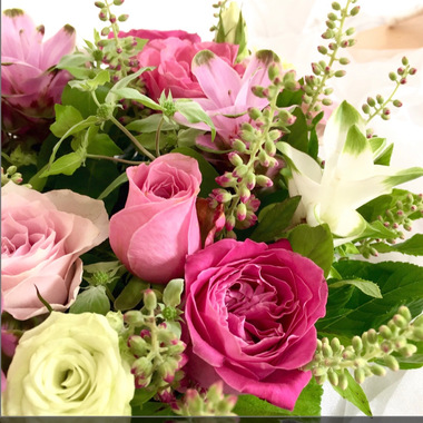 rose-blacktea eriko