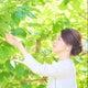 櫻井ミユキ ドライフラワー セラピスト 寺こやそわ花  シェアスペース