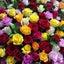 画像 福島県須賀川市 気軽にお花のアレンジメントを楽しめるお教室【JIN】のユーザープロフィール画像