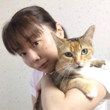 動物看護師/青山ともみ 訪問介護・シッター