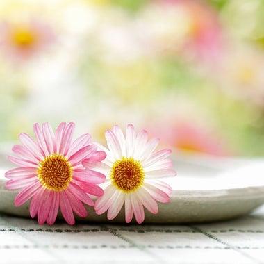 ♡♫ お花畑♡♫〜LOVE