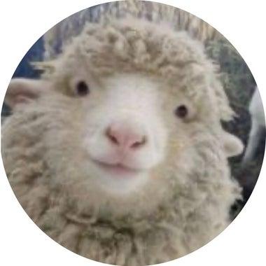さまよう羊