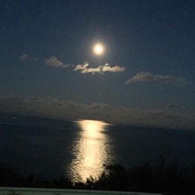 moonlight624