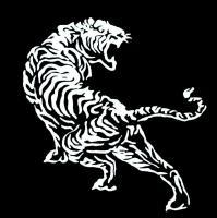 shibuya-tiger