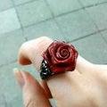 Rosaのプロフィール